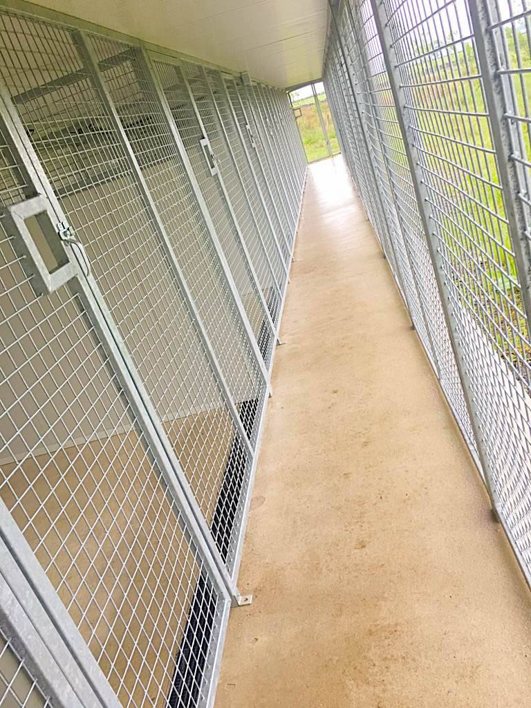 Spire View Kennels Kennel Picture 5